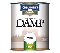Paint to Cover Damp